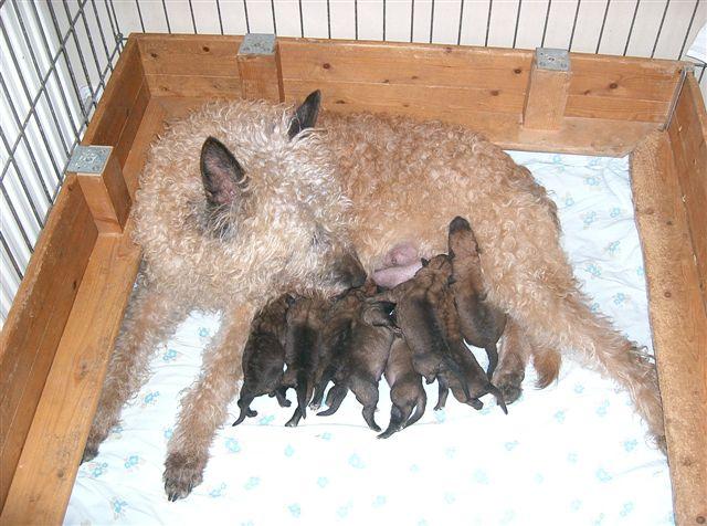 Moeder Arlette zorgt heel goed voor ze